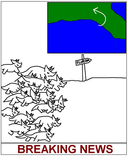 hurricanotops.PNG